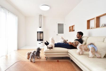 人と犬が家族として暮らす家